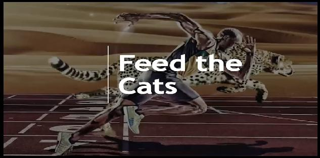 Sprint Training - Intro to Feed the Cats
