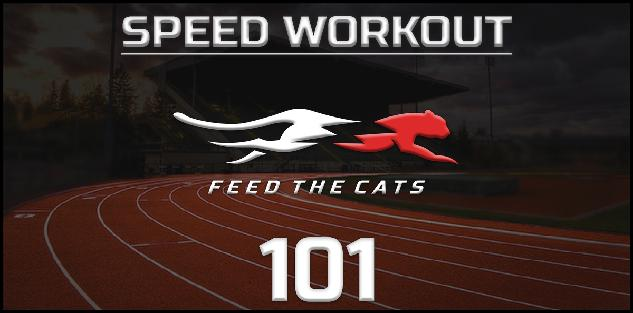 The Off-Season Speed Workout