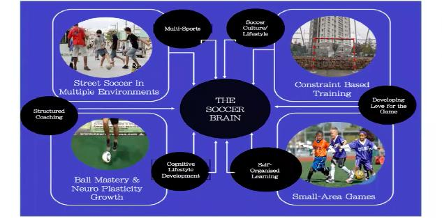 Developing Soccer Intelligence in Players