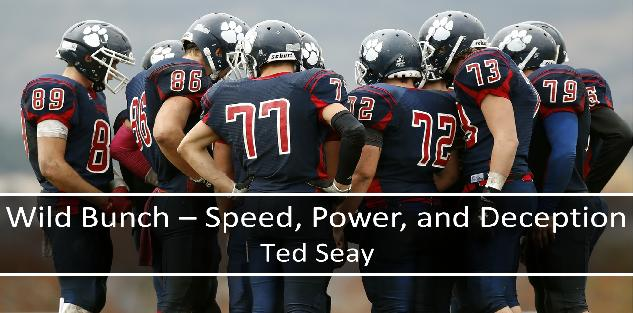 Wild Bunch - Speed, Power, and Deception in Youth Football