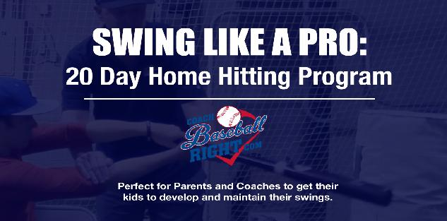 Swing Like a Pro: 20 Day Home Hitting Program