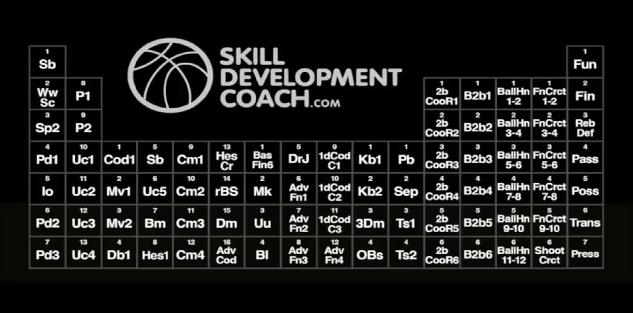 Skill Development Coaching