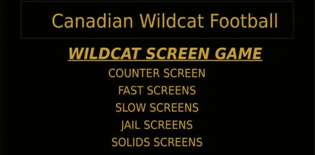 Chris Koetting: Wildcat Screen Game