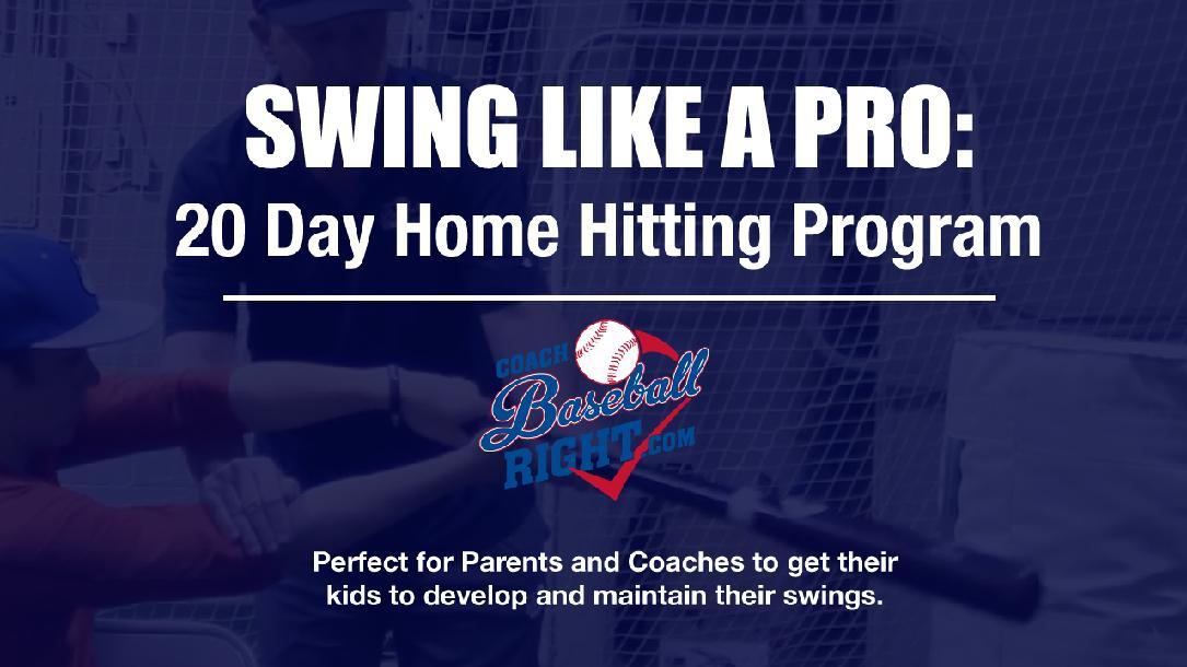 Swing Like A Pro 20 Day Home Hitting Program By Steve Nicollerat